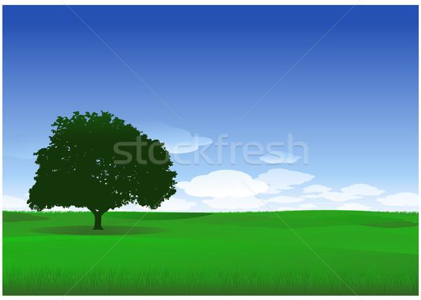 Charakter krajobraz zielone drzewo chmury niebo Zdjęcia stock © hugolacasse
