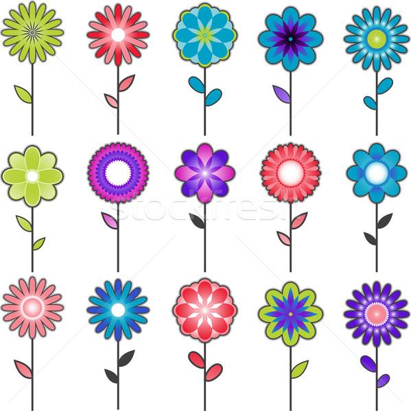 Kwiat kolekcja projektu odizolowany biały Zdjęcia stock © hugolacasse