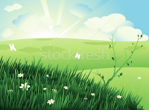 Stock fotó: Természet · tájkép · zöld · fa · felhők · égbolt