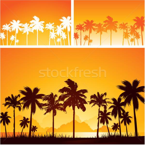 тропические цветок морем фон лет Palm Сток-фото © hugolacasse