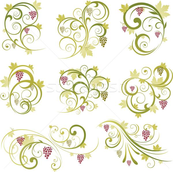 вино дизайна орнамент цветочный декоративный природы Сток-фото © hugolacasse