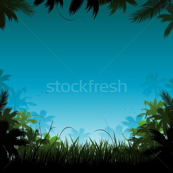 джунгли иллюстрация цветок лес закат фон Сток-фото © hugolacasse