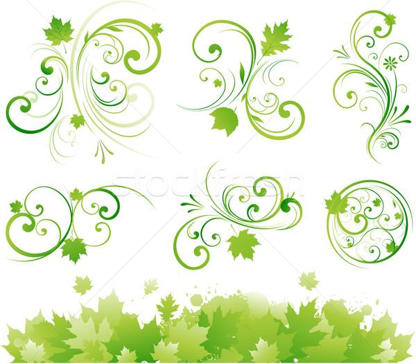 Piękna kwiatowy granicy charakter zielone kolor Zdjęcia stock © hugolacasse