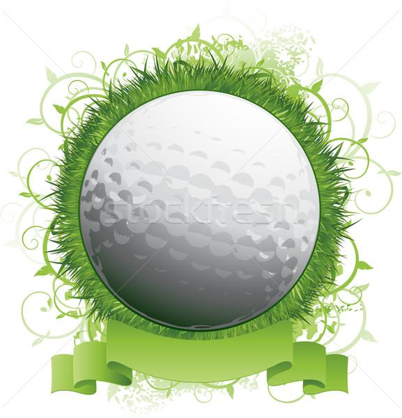 Golf background Stock photo © hugolacasse