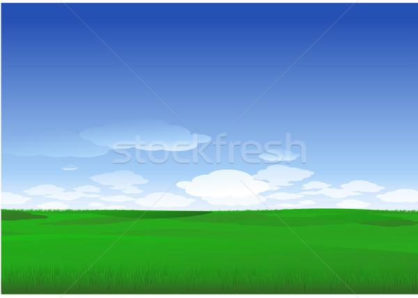 Természet tájkép zöld fa felhők égbolt Stock fotó © hugolacasse