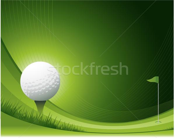 Golf wiosną trawy sportu charakter tle Zdjęcia stock © hugolacasse