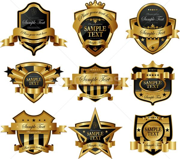 Dekoracyjny złota ramki etykiety wina Zdjęcia stock © hugolacasse
