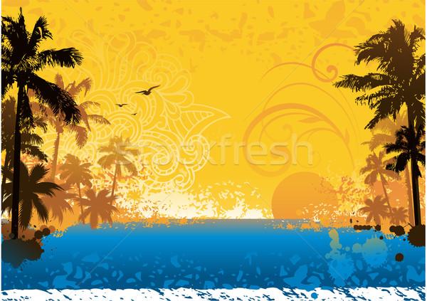 ストックフォト: 熱帯 · 夏 · デザイン · 水 · 太陽 · 塗料
