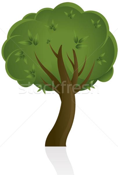 Fa terv illusztráció természet levél háttér Stock fotó © hugolacasse