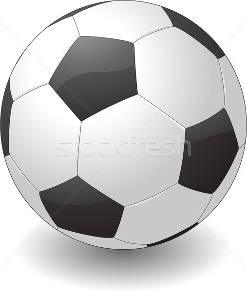 Soccer ball isolated on white background Stock photo © hugolacasse