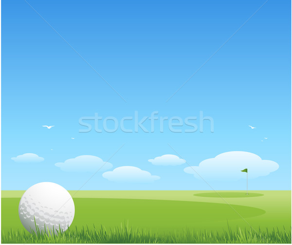 Golf trawy krajobraz lata piłka malarstwo Zdjęcia stock © hugolacasse