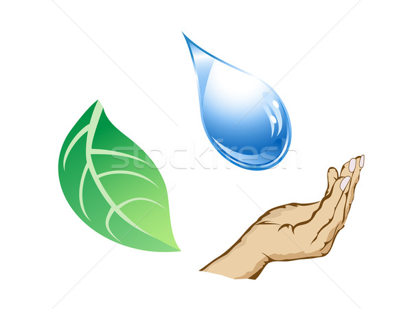 the cycle of water-drop, hand and leaf Stock photo © huhulin