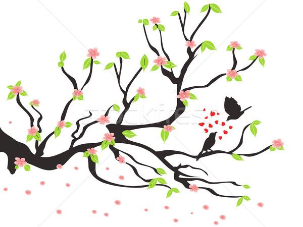 loving birds on the spring plum tree Stock photo © huhulin