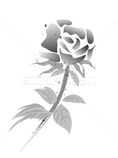 Rózsa virág kínai fehér verzió boldog Stock fotó © huhulin