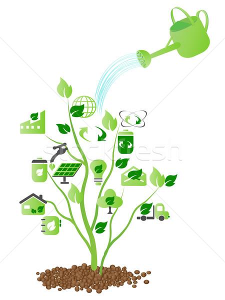 água verde ícones crescente árvore Foto stock © huhulin