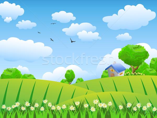 Gyönyörű mező vidéki jelenet fa tavasz fű Stock fotó © huhulin