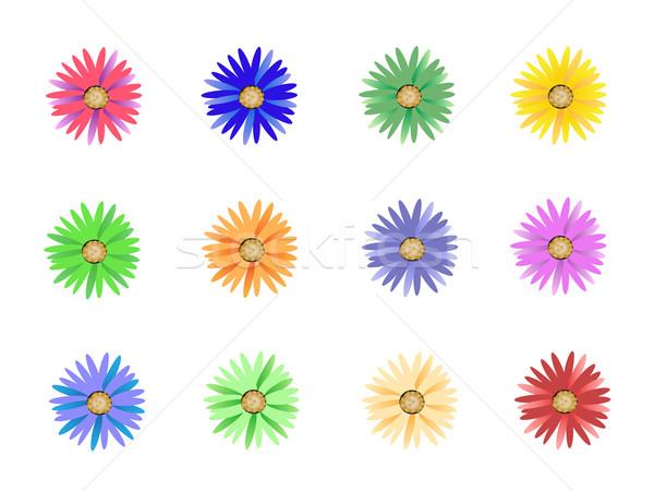 Foto stock: Colorido · flores · hermosa · diseno · verano · verde