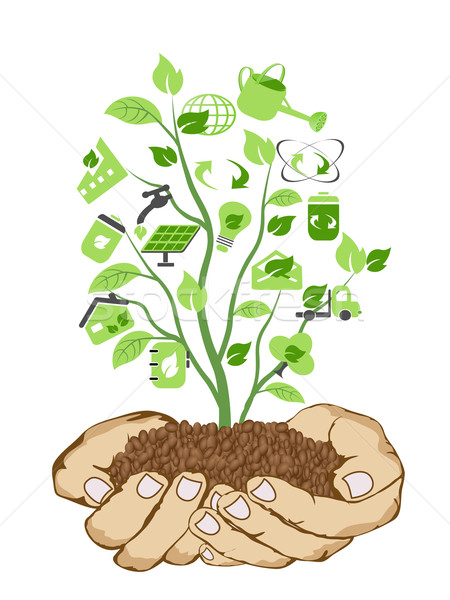 hands holding green icons Stock photo © huhulin