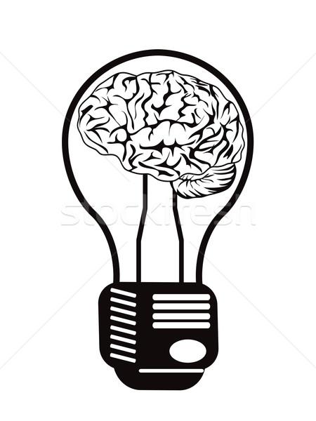 brain light bulb Stock photo © huhulin
