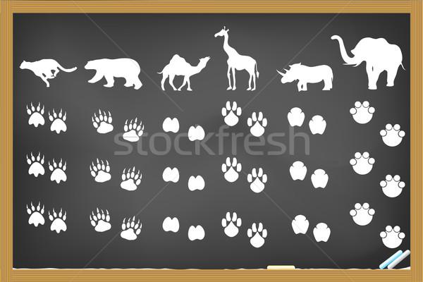 Hayvanlar ayak izleri tahta çizim doğa sanat Stok fotoğraf © huhulin