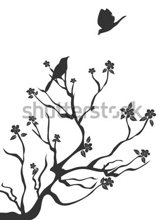 birds talk love Stock photo © huhulin