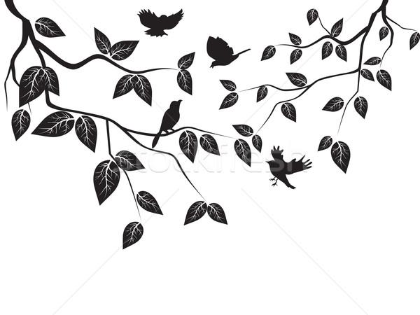 Photo stock: Laisse · oiseaux · battant · arbre · forêt · paysage