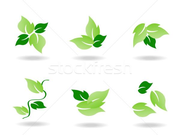 Hoja verde icono diseno hierba resumen paisaje Foto stock © huhulin