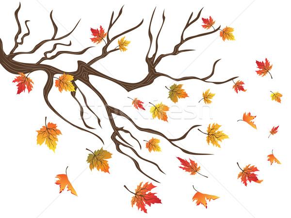 Queda abstrato natureza laranja folhas outono Foto stock © huhulin