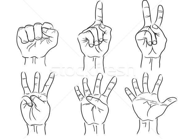 hands making the numbers - 0 to 5 - vector Stock photo © huhulin