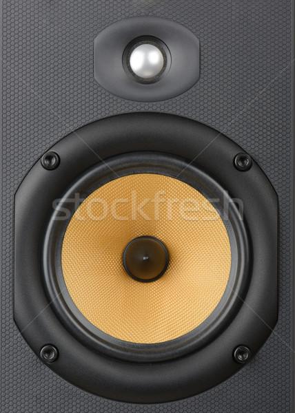 Music speaker Stock photo © hyrons
