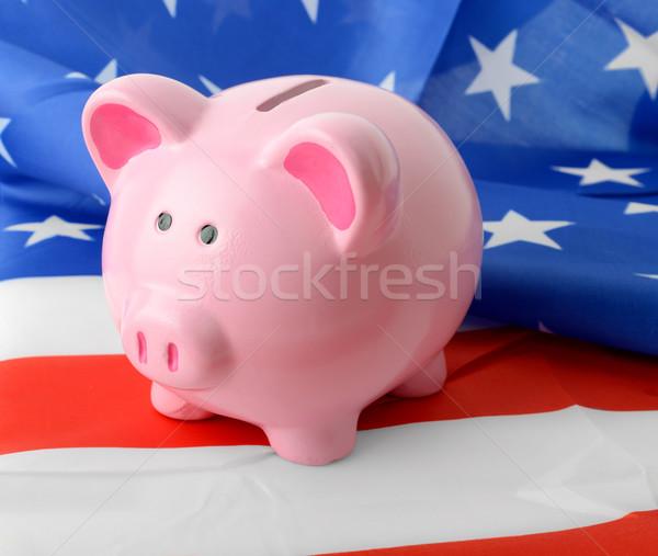USA bankügylet érme bank zászló pénz Stock fotó © hyrons