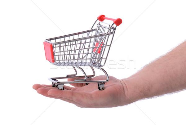 El alışveriş alışveriş sepeti yalıtılmış beyaz Stok fotoğraf © hyrons