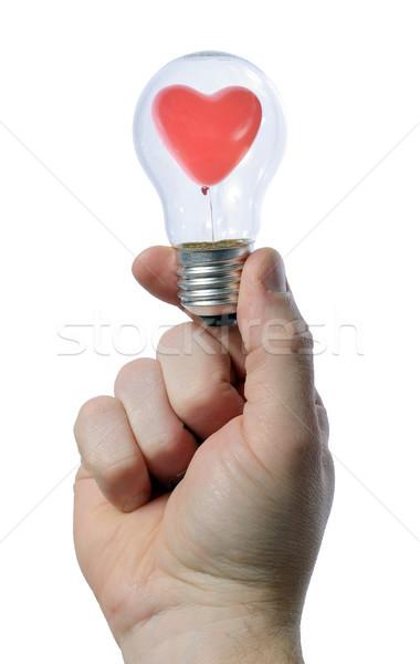 Gloeilamp man hand business licht Stockfoto © hyrons