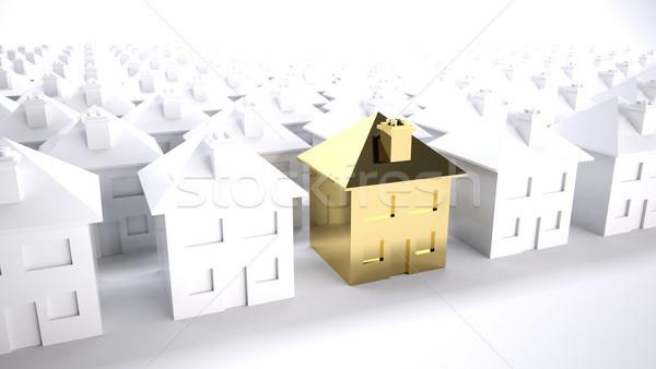 Goud huis keuze eigendom ontwikkeling financieren Stockfoto © hyrons