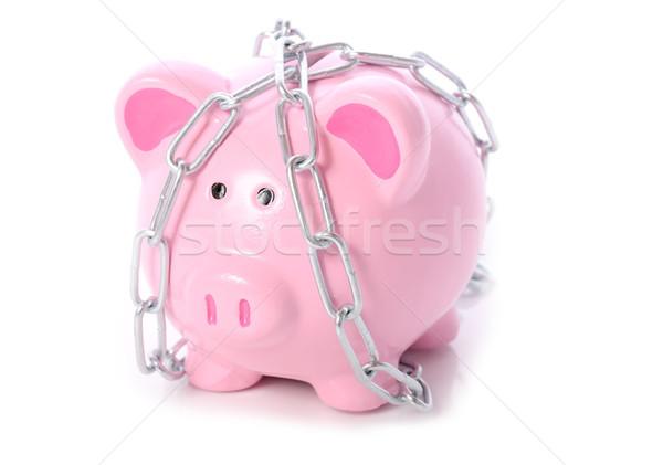 Malac lánc persely zár ki pénz Stock fotó © hyrons