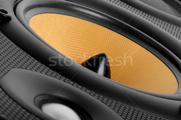 Müzik konuşmacı yüksek son ses Stok fotoğraf © hyrons