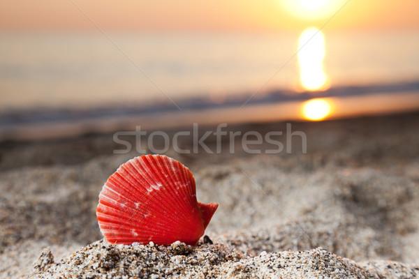 Zee zand strand zomer Stockfoto © ia_64