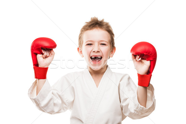 Smiling karate champion child boy gesturing for victory triumph Stock photo © ia_64