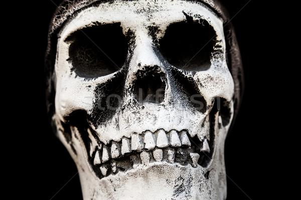 Humanismo crânio osso anatomia humana antigo pessoas Foto stock © ia_64