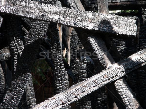 Log burnt by fire Stock photo © ia_64