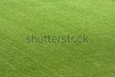 травой поле играет Футбол спорт зеленая трава области Сток-фото © ia_64