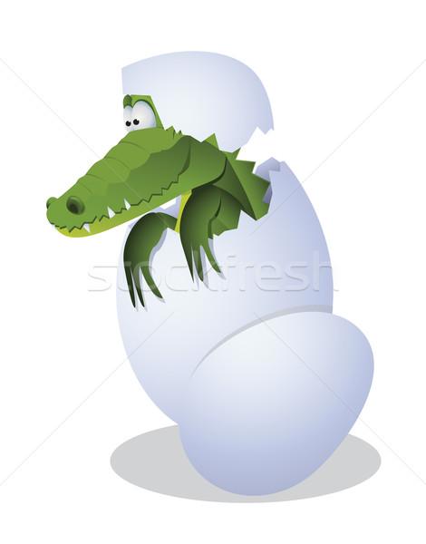 Krokodil tojás vicces zöld jókedv állatok Stock fotó © iaRada