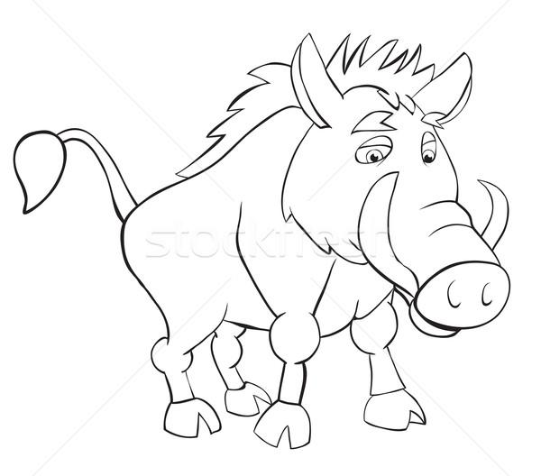 Fan wild mannetjesvarken schets tekening leuk Stockfoto © iaRada