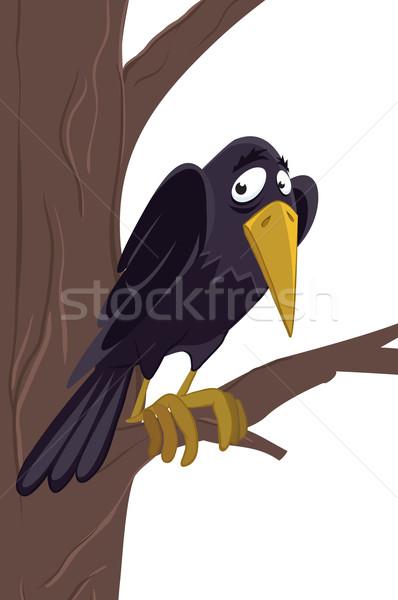 Raaf boom natuur vogels dieren zwarte Stockfoto © iaRada