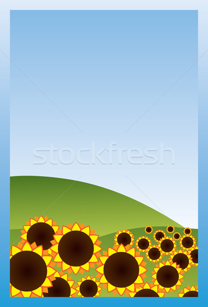 Veld zonnebloemen blauwe hemel hemel landschap kunst Stockfoto © iaRada