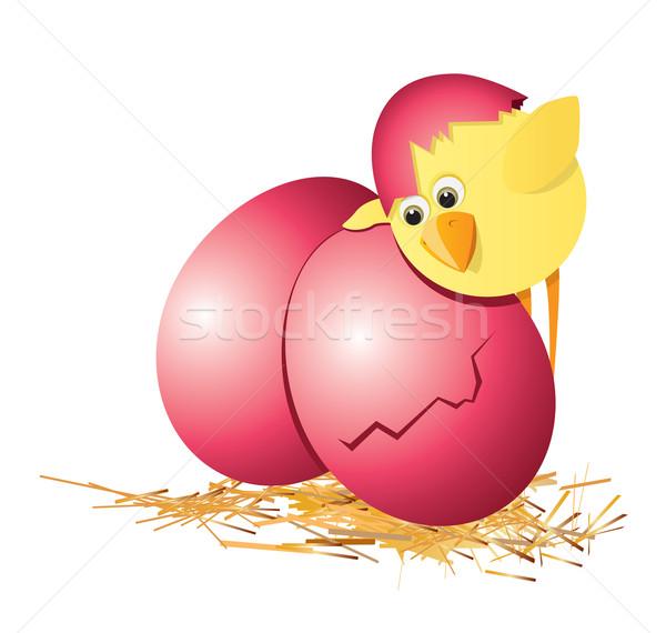 Húsvéti tojások tyúk húsvét baba madár élet Stock fotó © iaRada