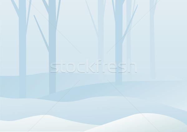 Winter bos landschap natuur schilderij silhouet Stockfoto © iaRada
