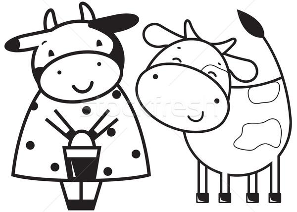 Kettő vicces tehenek boldog tehén jókedv Stock fotó © iaRada