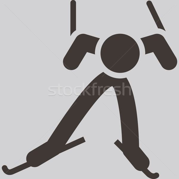 Cross-country skiing icon Stock photo © iaRada