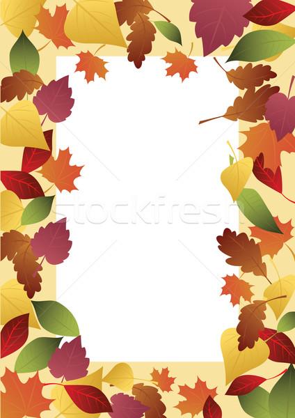 çerçeve Sonbahar Yaprakları Renkli Ağaç Yaprak Boyama